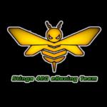 Logo del gruppo di Stings 420 eRacing Team